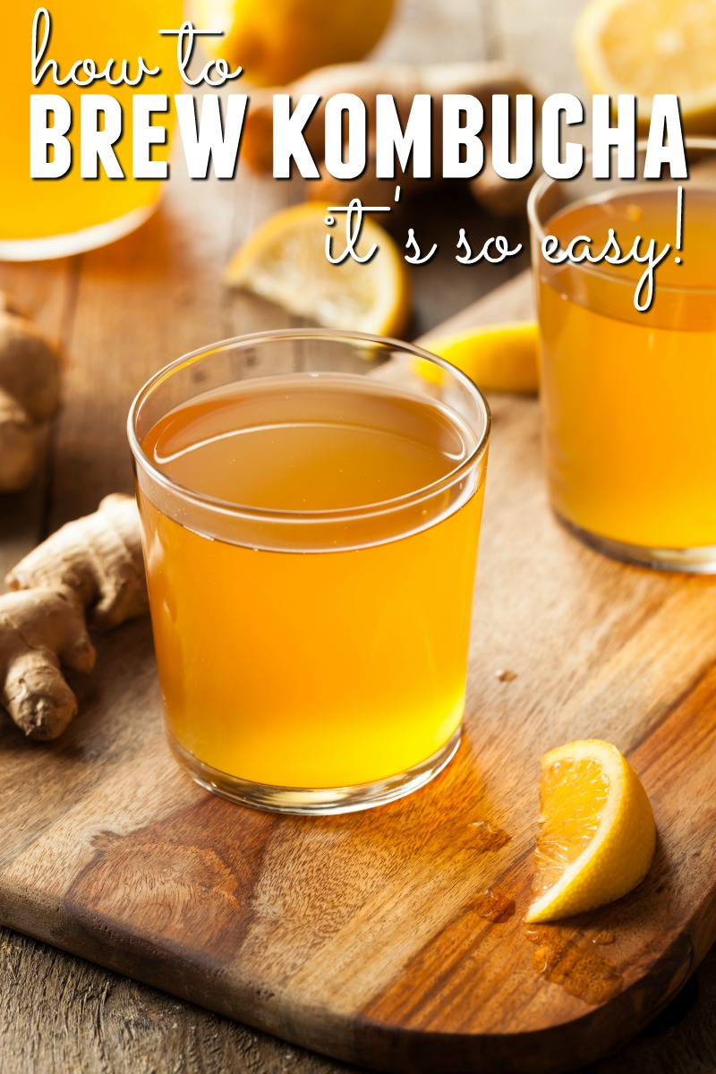 Do you want to learn about making kombucha at home? You've come to the right place! We'll show you step by step how to brew kombucha at home - it's so easy!