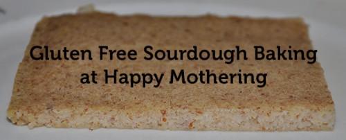 gluten-free-sourdough-baking