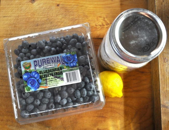 blueberry-syrup-ingredients
