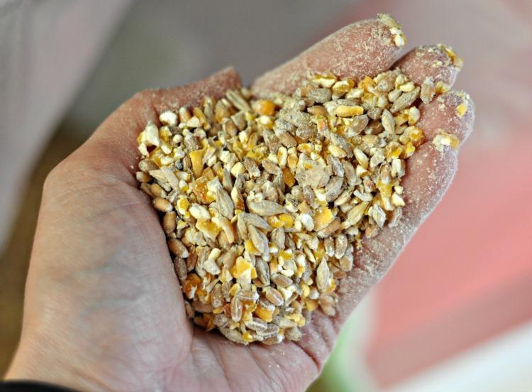organic-scratch-grains