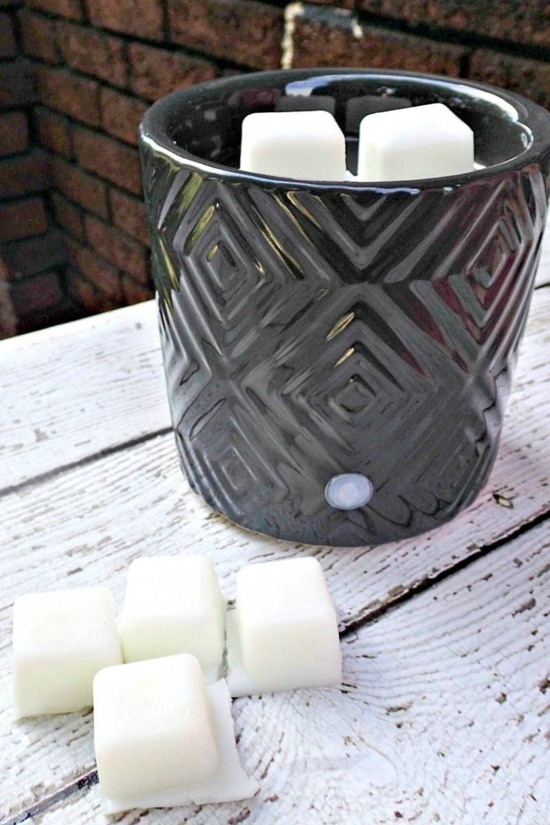 Do you love your wax warmer, but worry about the toxic chemicals emitted from your wax tarts? Try your hand at making these DIY natural wax melts at home. They're edible too!