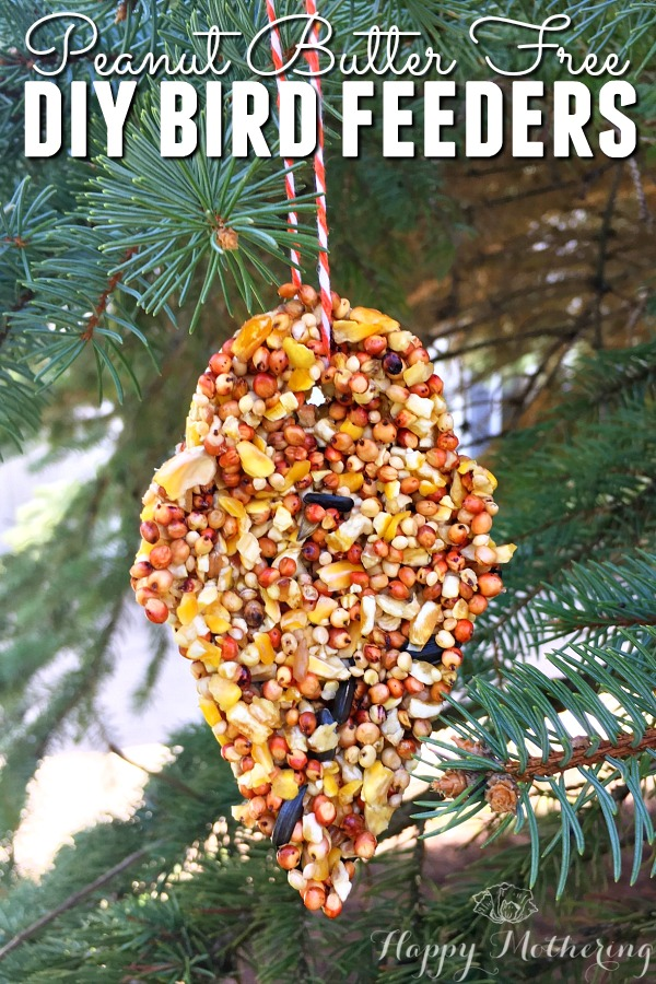 Are you searching for a peanut butter free DIY bird feeder tutorial? Check out how we make our DIY bird feeders - they're simple and birds love them!